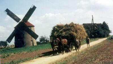 Historische Ansicht Mühle Großdobritz